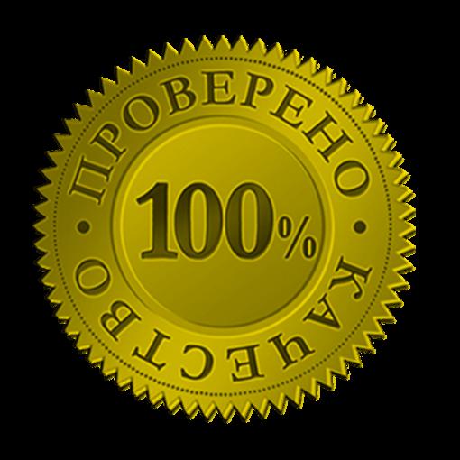 100-garantia.png (510×510)